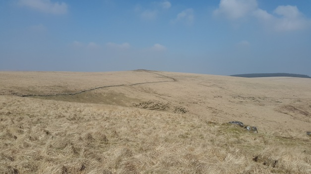 Sittaford Tor from Winney's Down