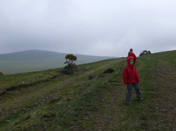 Yes Tor on the left as we head up the track over Longstone Hill
