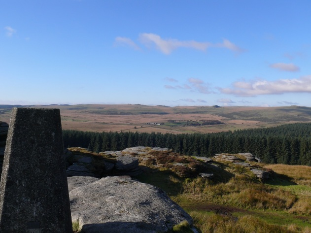 Bellever Tor trig with Longaford Tor and Higher White Tor over Bellever Forest