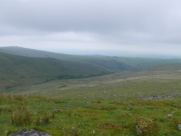 Looking down to the West Okement River from Black Tor