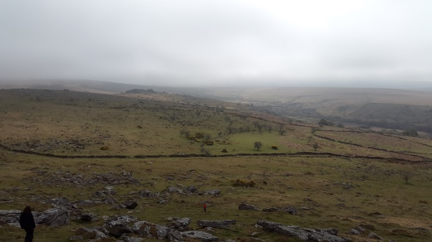Combesghead Tor from Down Tor