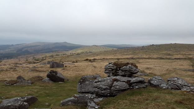 Looking back to Down Tor with Leather Tor beyond from Combeshead Tor