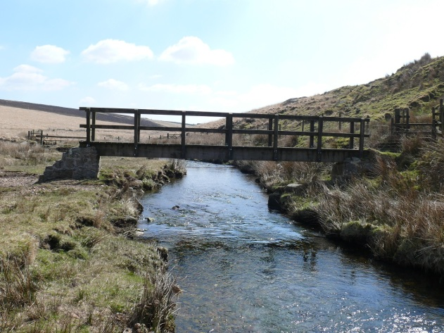Bridge over the Cowsic