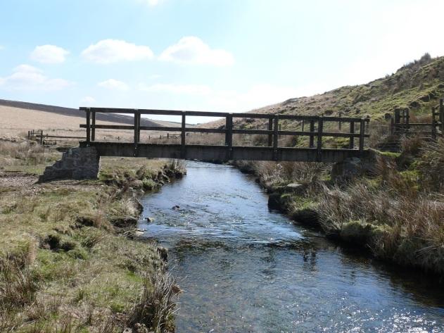 Bridge over the Cowsic
