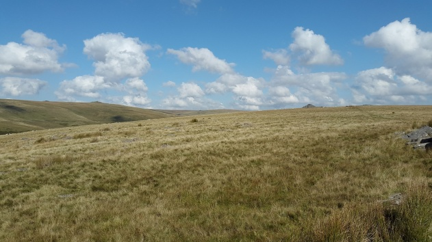 The ridge ahead from Crockern Tor, with Longaford Tor top right