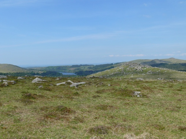 Looking back to Down Tor with Burrator Reservoir beyond.
