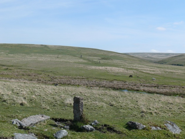 Looking across to Drizzlecombe, the two standing menhirs linked by a stone row with the Giant's Basin just behind