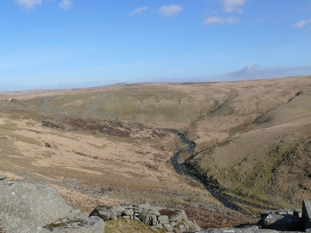 Tavy Cleave from Ger Tor