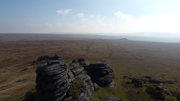 Higher and Lower Dunna Goat from Great Links Tor