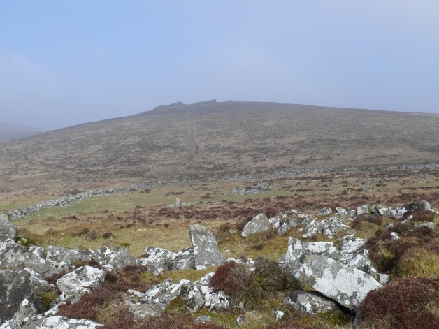 Grimspound below with Hookney Tor behind