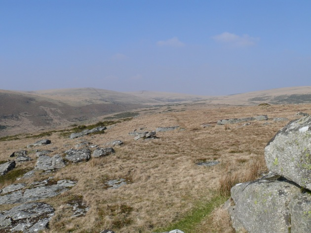 Looking up the East Dart valley towards Sittaford Tor
