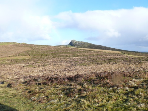 Haytor taken from Saddle Tor