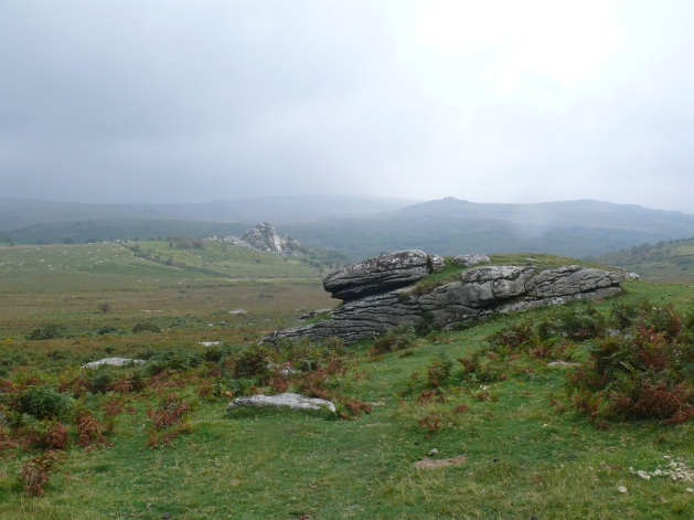 Looking to Vixen Tor from Heckwood Tor