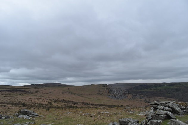 Holwell Tor 3