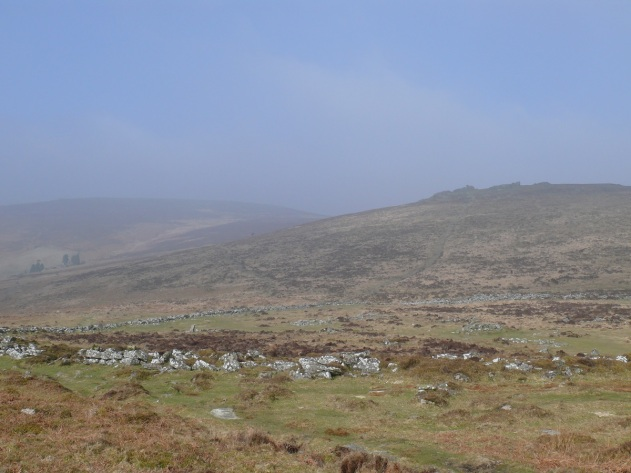 Hookney Tor to the right above Grimspound