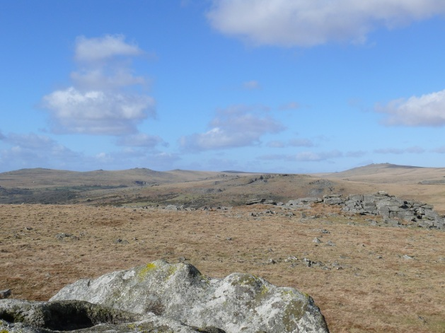 Down Tor in the middle of the photo with Great Mis Tor (right) round to Cox Tor behind. From Leeden Tor