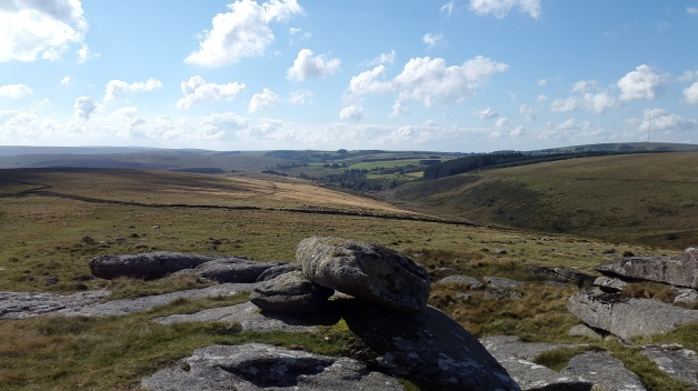 Littaford Tor 1