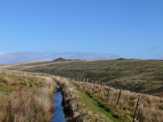 From the Devonport Leat looking to Littaford Tor right and Longaford Tor left