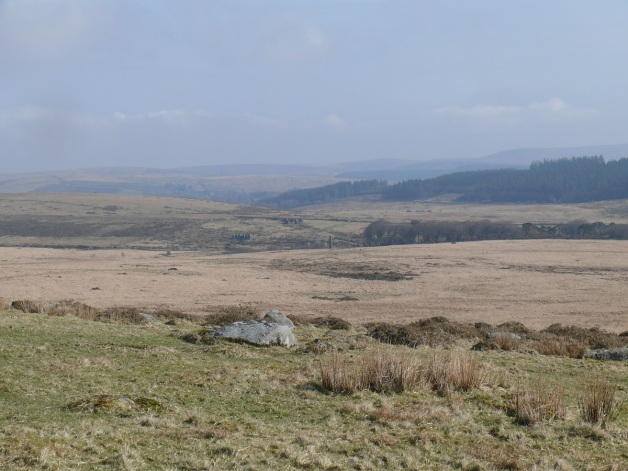 Looking towards the Powdermills chimney from Littaford Tor. Belliver forest beyond