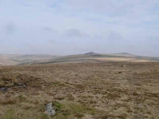 Longaford tor in the centre of the picture taken from the path from Crocken Tor