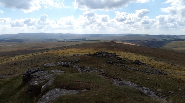 Back along the ridge to Littaford Tor and Crockern Tor