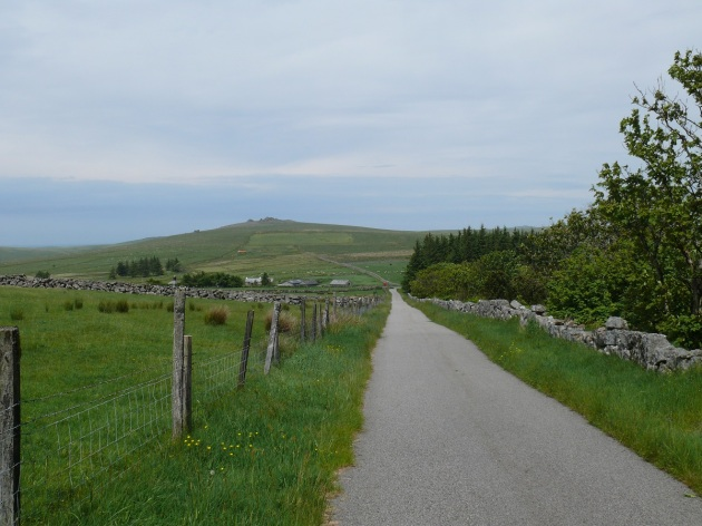 Looking back down the lane which leads to the top of North Hessary Tor. Great Mis Tor in the distance