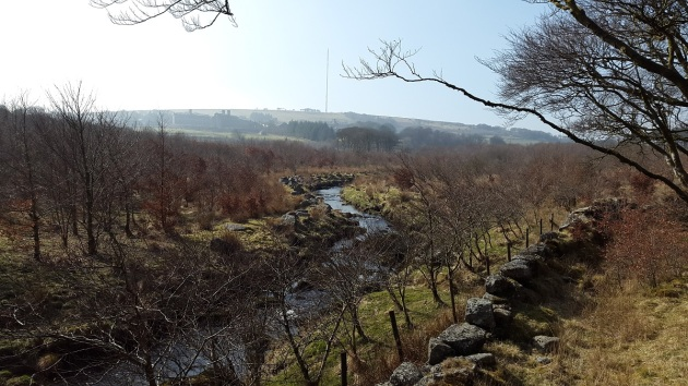 View from the Oakery road bridge along the Blackbrook river to Princetown