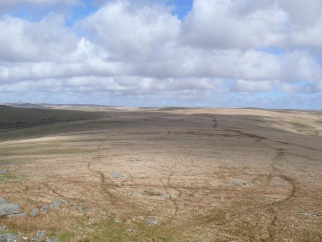 Wilderness behind Roos Tor