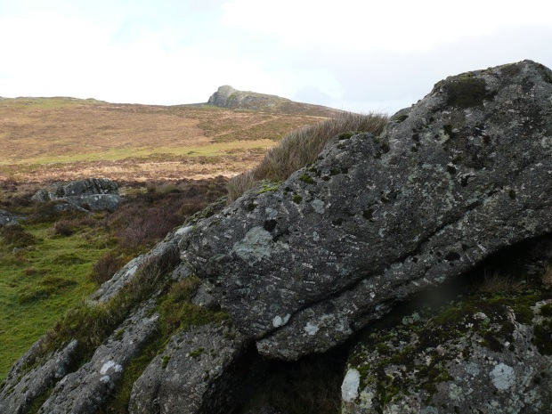 Looking to Haytor from Saddle Tor