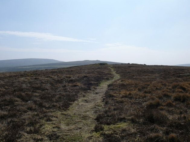 The path to Shapley Tor, looking back into the sun and to Hookney Tor