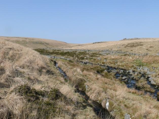 Devonport leat as it splits from the West Dart