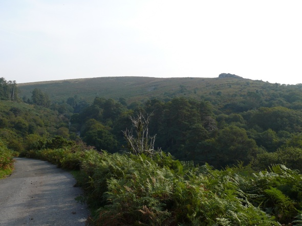 Higher up and we get views to Shipley Tor