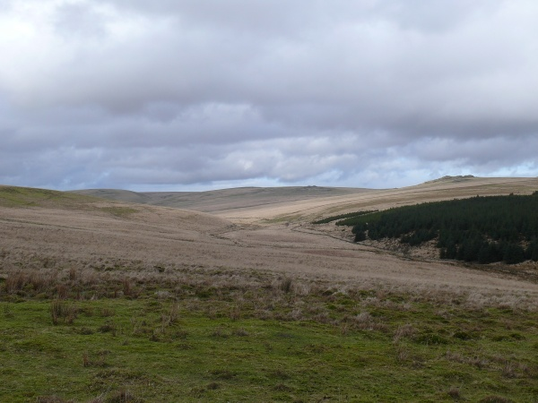Looking back with Beardown and Lydford Tors in view