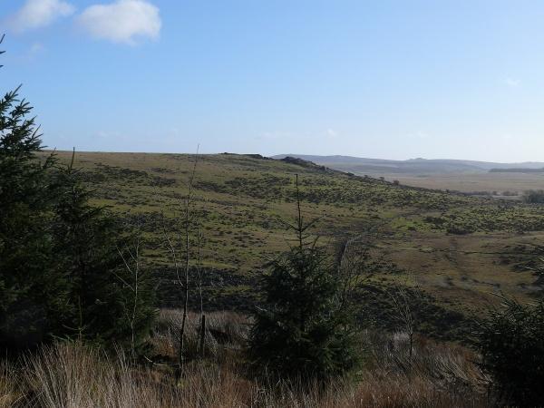 Emerging to views to Crocken Tor
