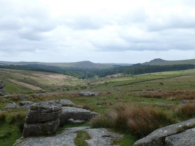 The Meavy valley from Black Tor
