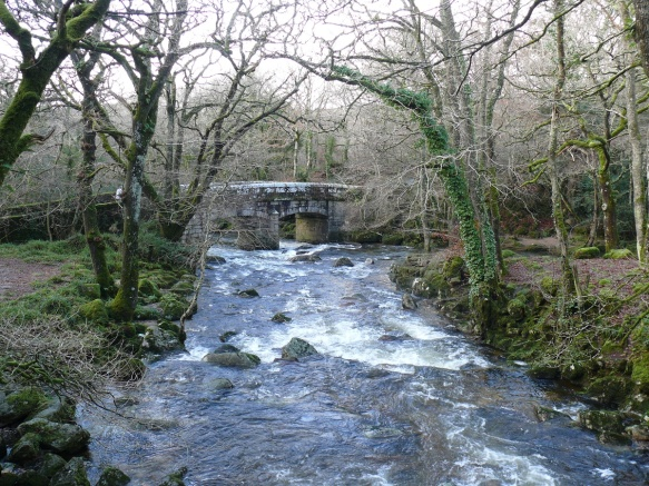The River Plym and Shaugh Bridge