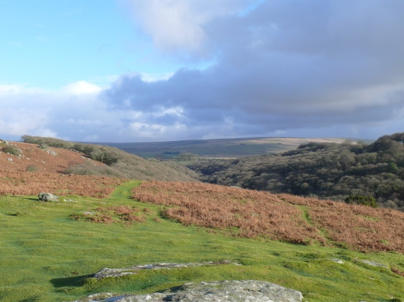 Plym valley to the right, looking back towards Cadover