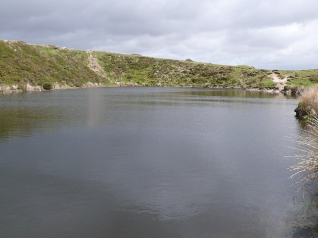 Crazywell Pool