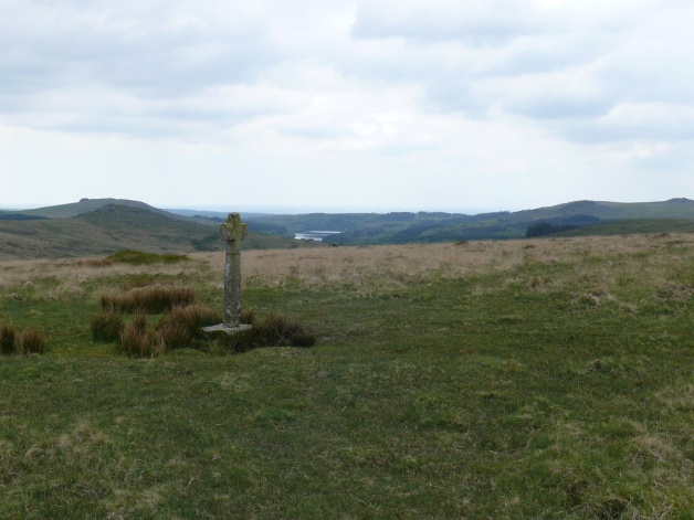 Newleycombe Cross and Burrator