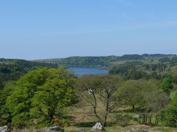 Burrator Reservoir from Snapper Tor