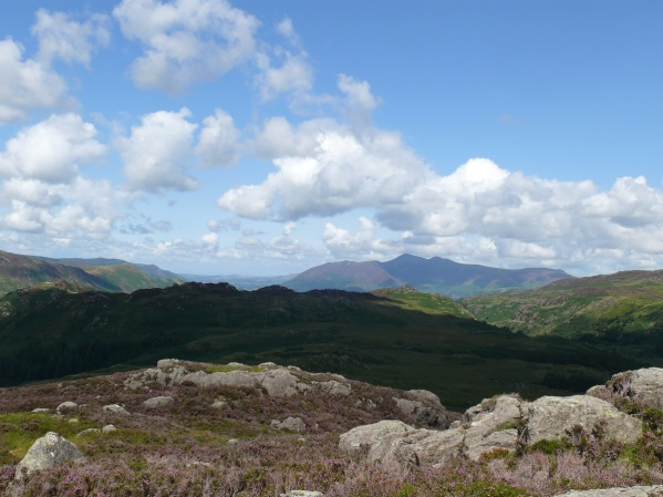 Over Grange Fell to Skiddaw from the summit of Great Crag