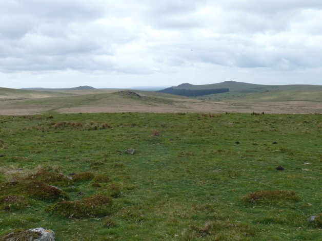 Looking back to Hart Tor with Leather Tor and Sharpitor behind to the right