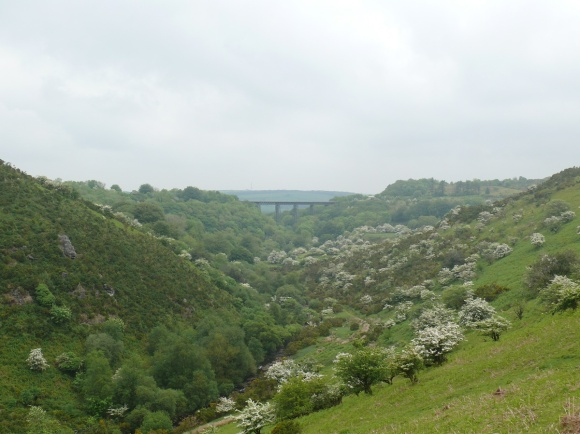 Looking the other way to Meldon Viaduct
