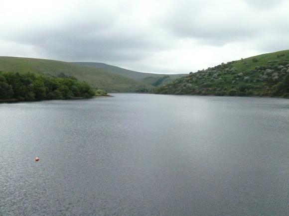 Last look along the reservoir