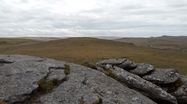 Looking back to Swell Tor from Kings Tor