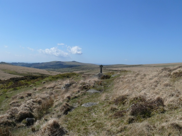 Devonport Leat Cross