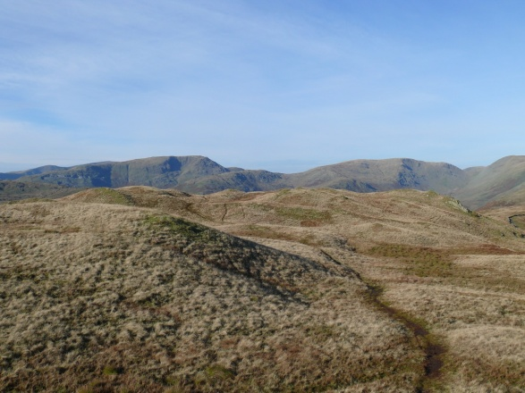 Red Scress left and Caudale Moor right