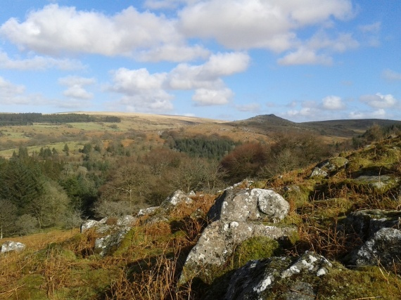 First glimpse over the trees to Down Tor