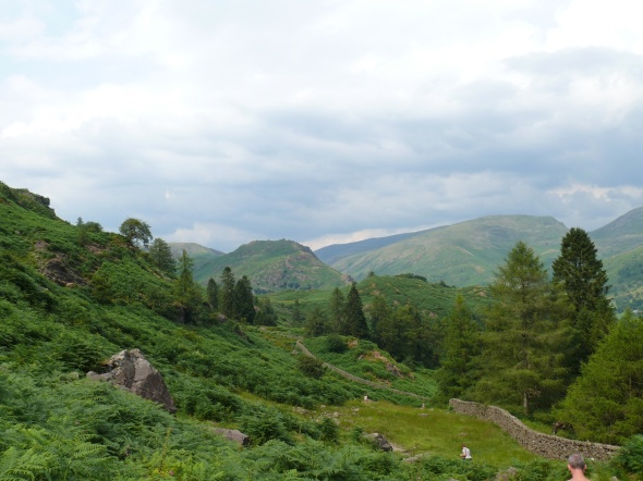 Helm Crag from the descent of Silver How