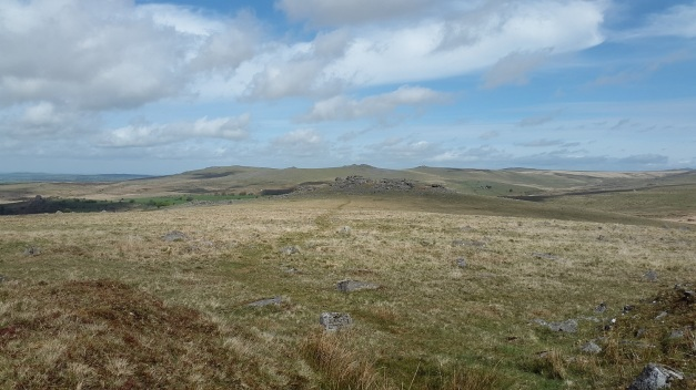 Looking along the path to Kings Tor from Swell Tor